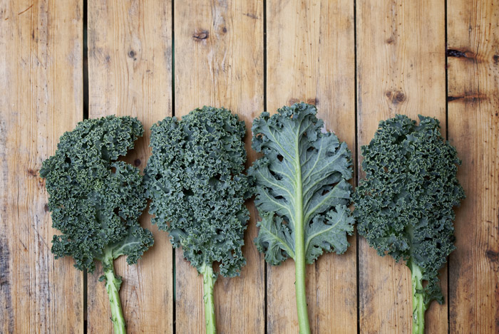 different-types-kale
